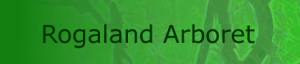 rogaland-arboret-logo